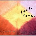 A City of Birds - Ambitions