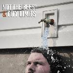 City Limits / Not the Bees! - split