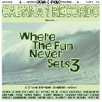 Various Artists - WHERE THE FUN NEVER SETS VOL. 3